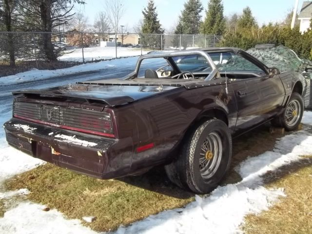 1982 pontiac trans am convertible 64000 miles great kitt knight rider 1983 1984. Black Bedroom Furniture Sets. Home Design Ideas