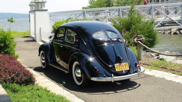 Classic 1951 split window crotch cooler beetle bug in show for 1951 volkswagen split window